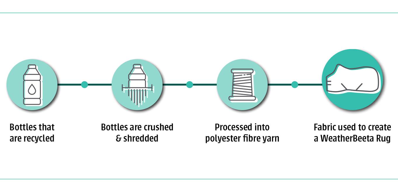 Bottles Infograph