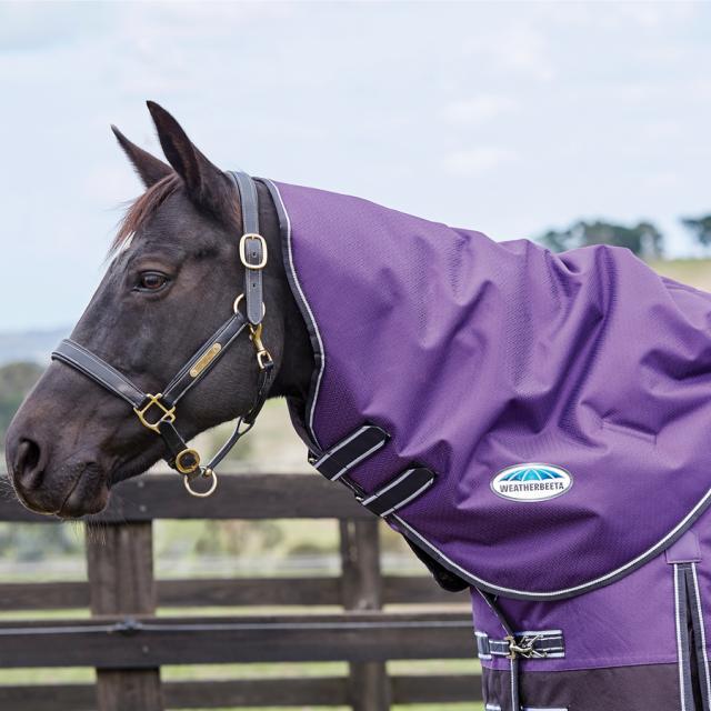 WeatherBeeta ComFiTec Plus Dynamic Neck Rug Medium Purple/Black