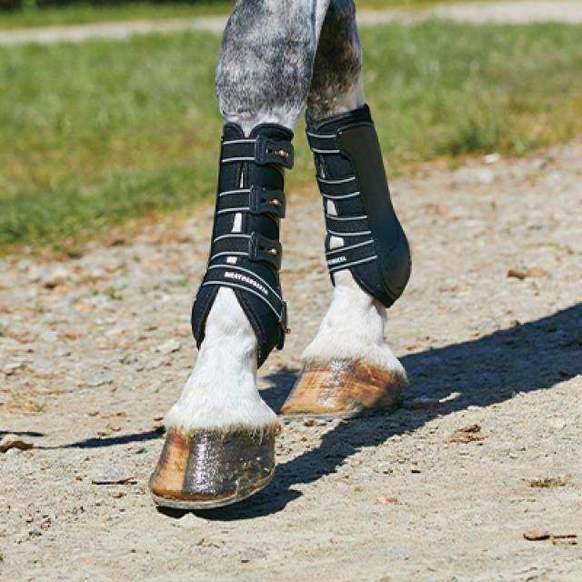 Horse Boots & Bandages Category