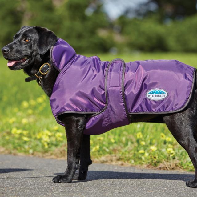 WeatherBeeta ComFiTec Windbreaker 420D Deluxe Dog Coat Purple/Black