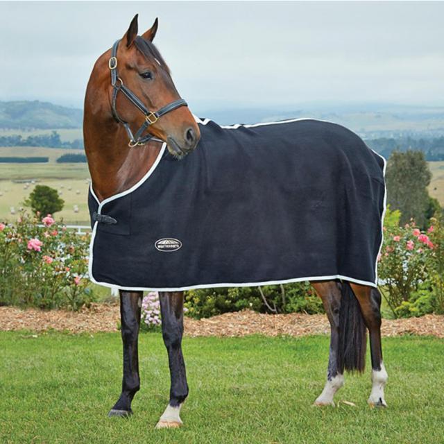 WeatherBeeta Wool Show Standard Neck Black/White