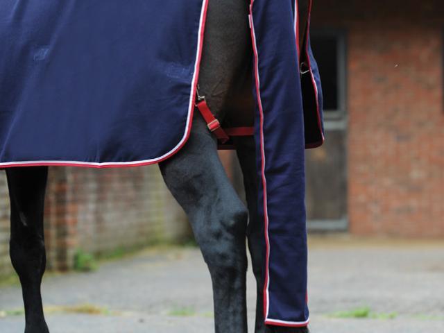 WeatherBeeta Cotton Show Tail Bag Navy/Red/White