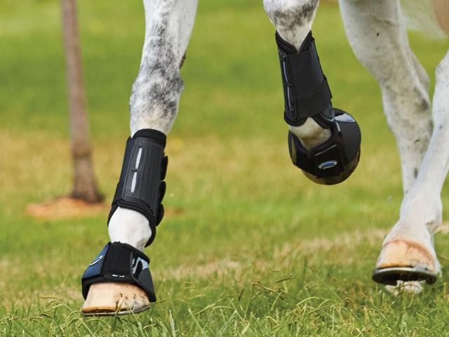 WeatherBeeta Eventing Front Boots Black