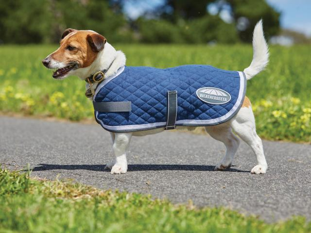 WeatherBeeta Quilted Dog Coat Navy/Grey/White