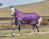 WeatherBeeta ComFiTec Plus Dynamic Combo Medium Wide Purple/Black