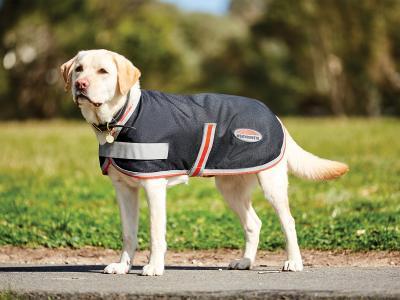 WeatherBeeta ComFiTec 1200D Therapy-Tec Dog Coat Black/Silver/Red