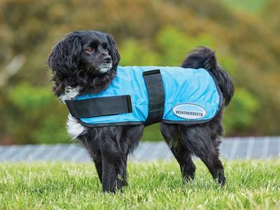 WeatherBeeta Therapy-Tec Cooling Dog Coat Blue