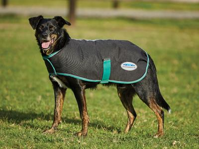 WeatherBeeta Green-Tec 900D Dog Coat Black/Bottle Green