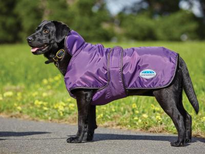 WeatherBeeta Windbreaker 420D Deluxe Dog Coat Purple/Black