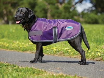 WeatherBeeta Windbreaker 420D Dog Coat Purple/Black